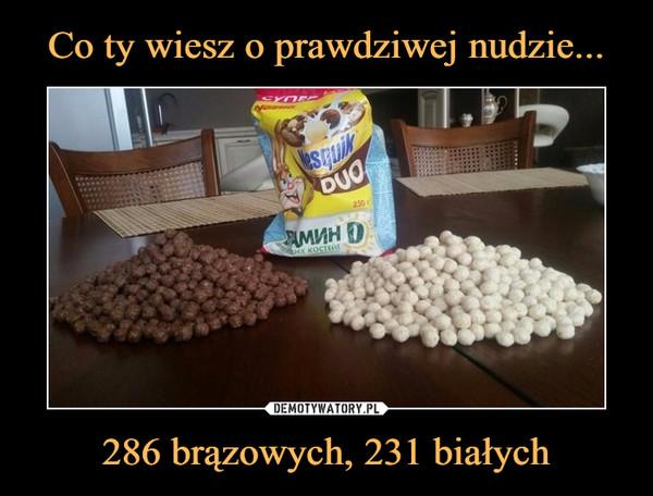 286 brązowych, 231 białych –