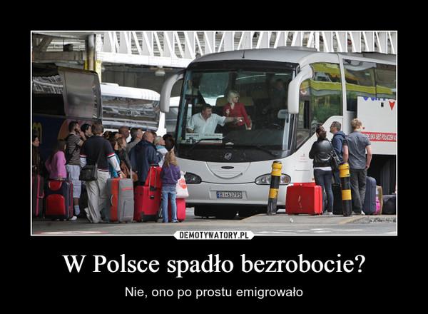 W Polsce spadło bezrobocie? – Nie, ono po prostu emigrowało