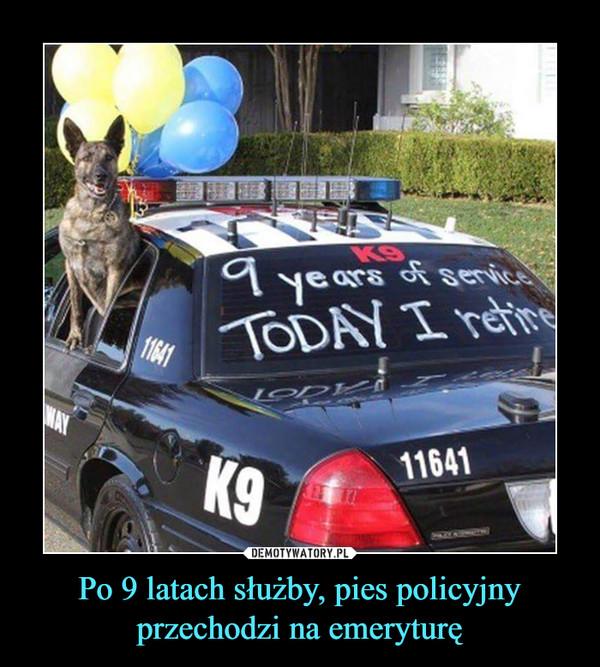 Po 9 latach służby, pies policyjny przechodzi na emeryturę –