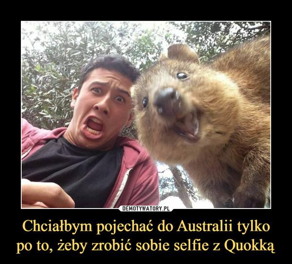 Chciałbym pojechać do Australii tylko po to, żeby zrobić sobie selfie z Quokką –