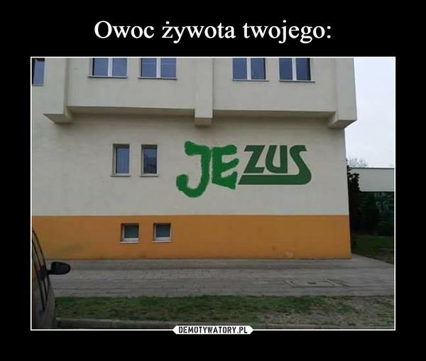 –  jezus