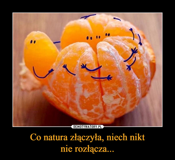 Co natura złączyła, niech niktnie rozłącza... –