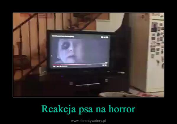 Reakcja psa na horror –