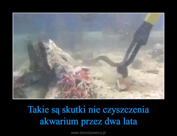 Takie są skutki nie czyszczenia akwarium przez dwa lata –