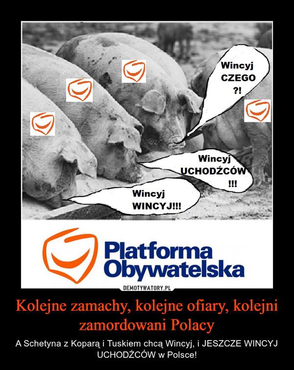 Kolejne zamachy, kolejne ofiary, kolejni zamordowani Polacy – A Schetyna z Koparą i Tuskiem chcą Wincyj, i JESZCZE WINCYJ UCHODŹCÓW w Polsce!