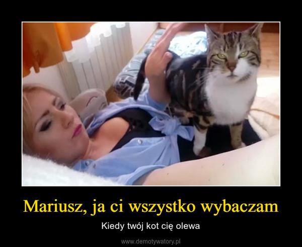 Mariusz, ja ci wszystko wybaczam – Kiedy twój kot cię olewa