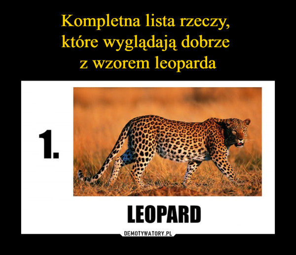 –  1. leopard