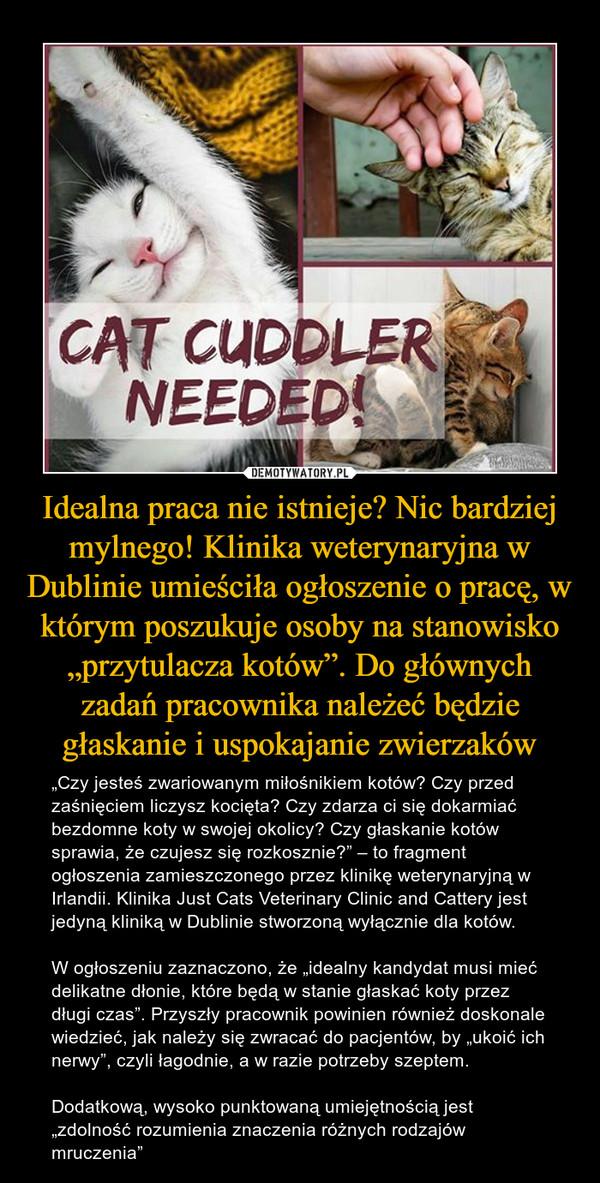 """Idealna praca nie istnieje? Nic bardziej mylnego! Klinika weterynaryjna w Dublinie umieściła ogłoszenie o pracę, w którym poszukuje osoby na stanowisko """"przytulacza kotów"""". Do głównych zadań pracownika należeć będzie głaskanie i uspokajanie zwierzaków – """"Czy jesteś zwariowanym miłośnikiem kotów? Czy przed zaśnięciem liczysz kocięta? Czy zdarza ci się dokarmiać bezdomne koty w swojej okolicy? Czy głaskanie kotów sprawia, że czujesz się rozkosznie?"""" – to fragment ogłoszenia zamieszczonego przez klinikę weterynaryjną w Irlandii. Klinika Just Cats Veterinary Clinic and Cattery jest jedyną kliniką w Dublinie stworzoną wyłącznie dla kotów.W ogłoszeniu zaznaczono, że """"idealny kandydat musi mieć delikatne dłonie, które będą w stanie głaskać koty przez długi czas"""". Przyszły pracownik powinien również doskonale wiedzieć, jak należy się zwracać do pacjentów, by """"ukoić ich nerwy"""", czyli łagodnie, a w razie potrzeby szeptem.Dodatkową, wysoko punktowaną umiejętnością jest """"zdolność rozumienia znaczenia różnych rodzajów mruczenia"""""""