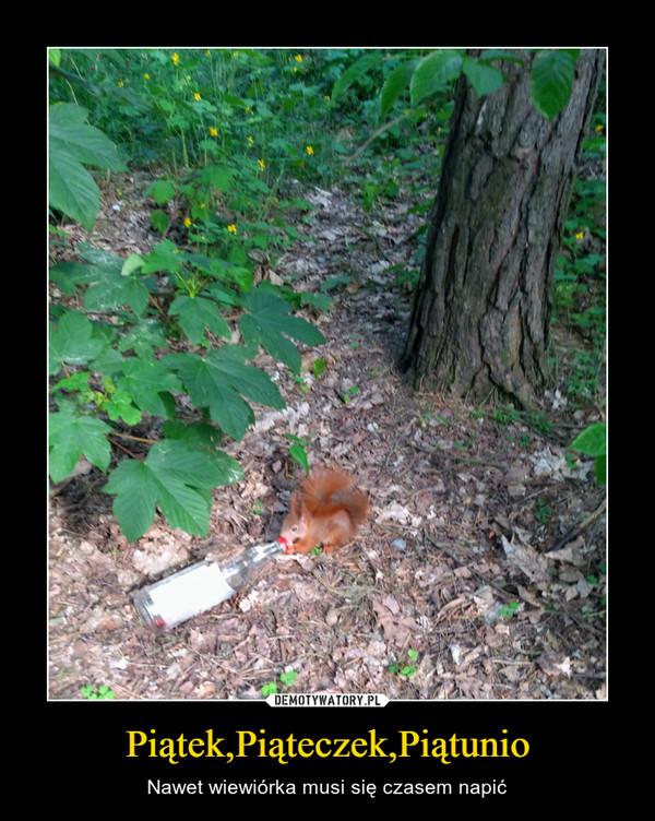 Piątek,Piąteczek,Piątunio – Nawet wiewiórka musi się czasem napić