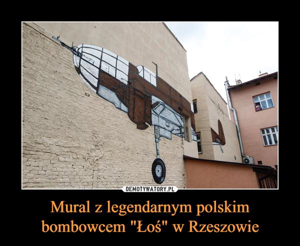 """Mural z legendarnym polskim bombowcem """"Łoś"""" w Rzeszowie –"""