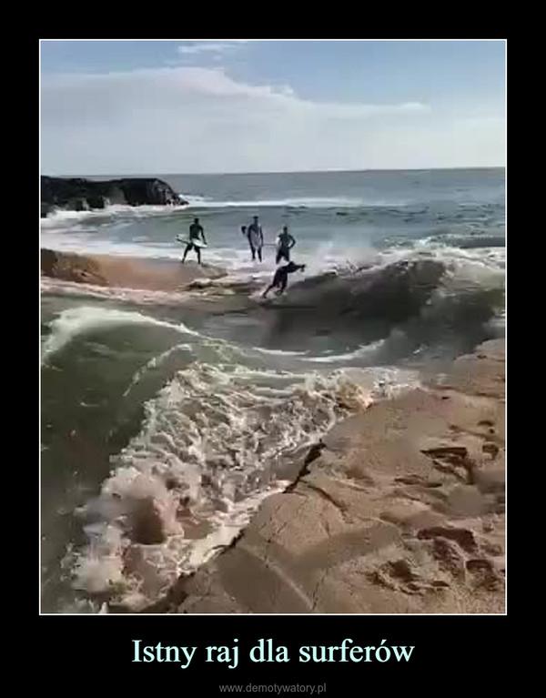 Istny raj dla surferów –