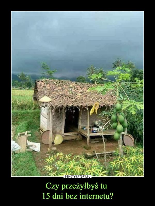 Czy przeżyłbyś tu 15 dni bez internetu? –