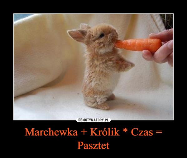 Marchewka + Królik * Czas = Pasztet –