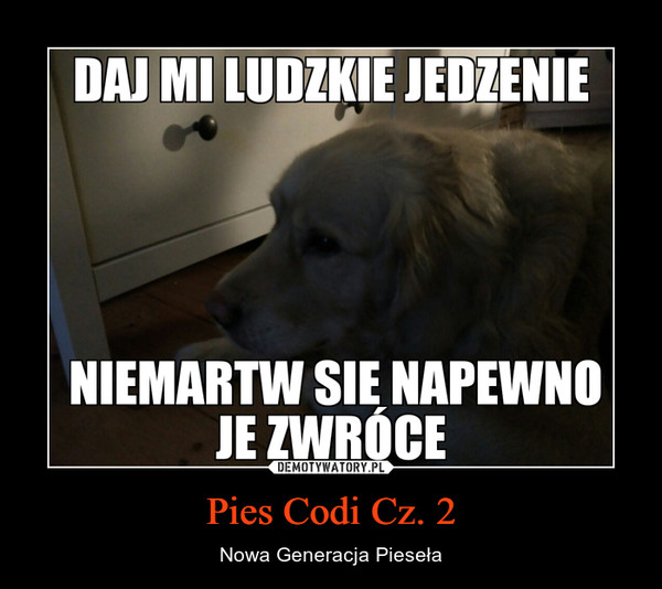 Pies Codi Cz. 2 – Nowa Generacja Pieseła