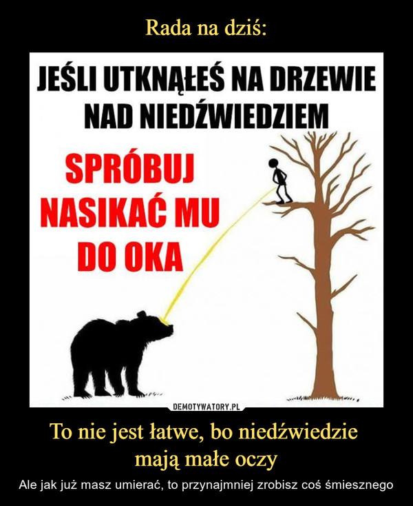 To nie jest łatwe, bo niedźwiedzie mają małe oczy – Ale jak już masz umierać, to przynajmniej zrobisz coś śmiesznego Jeśli utknąłeś na drzewie nad niedźwiedziem spróbuj nasikać mu do oka