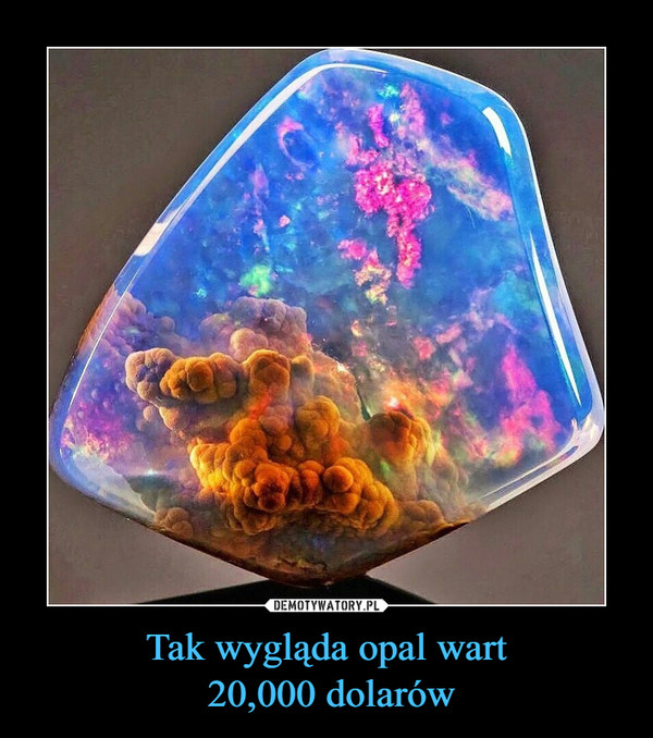 Tak wygląda opal wart 20,000 dolarów –