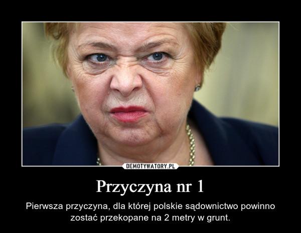 Przyczyna nr 1 – Pierwsza przyczyna, dla której polskie sądownictwo powinno zostać przekopane na 2 metry w grunt.