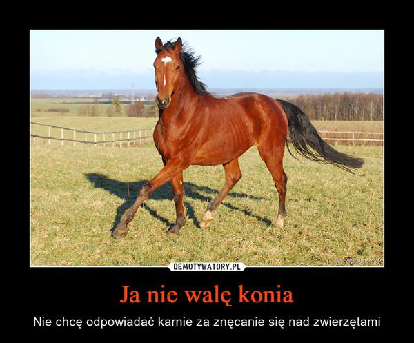 Ja nie walę konia – Nie chcę odpowiadać karnie za znęcanie się nad zwierzętami