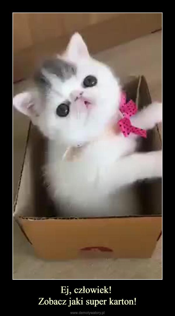 Ej, człowiek! Zobacz jaki super karton! –