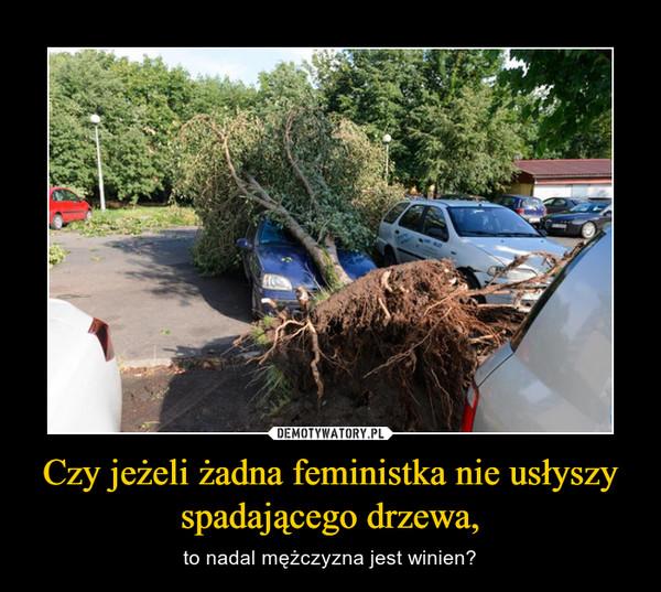 Czy jeżeli żadna feministka nie usłyszy spadającego drzewa, – to nadal mężczyzna jest winien?