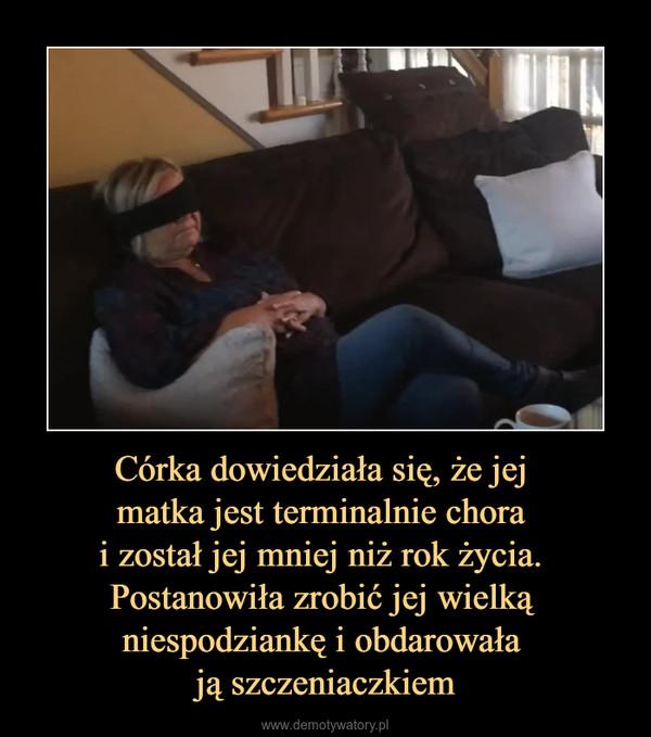 Córka dowiedziała się, że jej matka jest terminalnie chora i został jej mniej niż rok życia. Postanowiła zrobić jej wielką niespodziankę i obdarowała ją szczeniaczkiem –