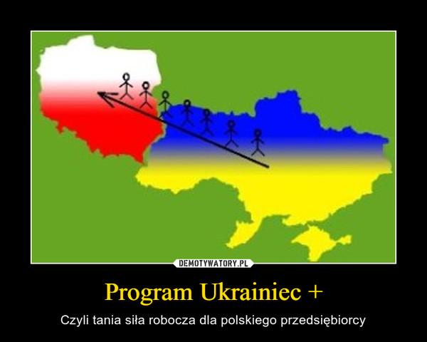 Program Ukrainiec + – Czyli tania siła robocza dla polskiego przedsiębiorcy