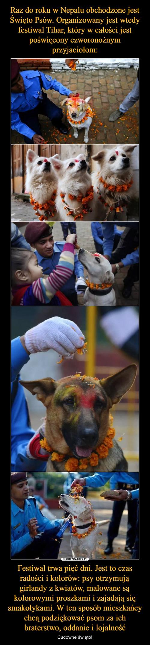 Raz do roku w Nepalu obchodzone jest Święto Psów. Organizowany jest wtedy festiwal Tihar, który w całości jest poświęcony czworonożnym przyjaciołom: Festiwal trwa pięć dni. Jest to czas radości i kolorów: psy otrzymują girlandy z kwiatów, malowane są kolorowymi proszkami i zajadają się smakołykami. W ten sposób mieszkańcy chcą podziękować psom za ich braterstwo, oddanie i lojalność