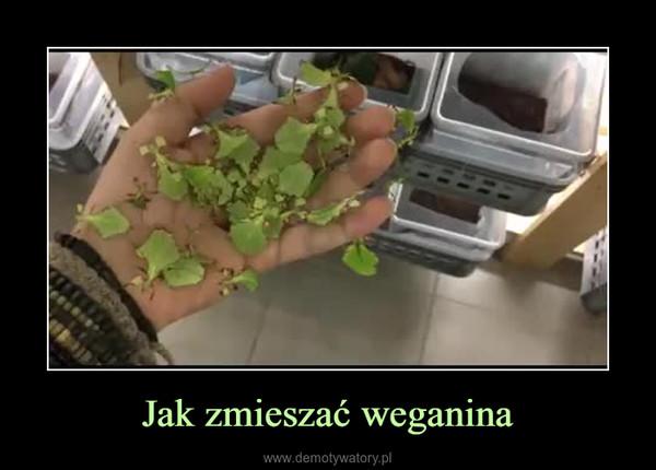 Jak zmieszać weganina –