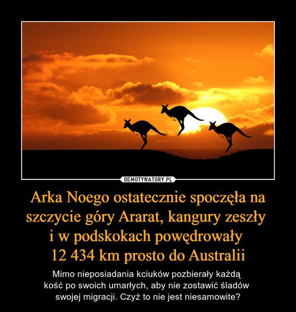 Arka Noego ostatecznie spoczęła na szczycie góry Ararat, kangury zeszły i w podskokach powędrowały 12 434 km prosto do Australii – Mimo nieposiadania kciuków pozbierały każdą kość po swoich umarłych, aby nie zostawić śladów swojej migracji. Czyż to nie jest niesamowite?