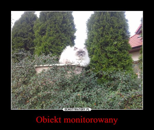 1510176474_odjxcl_600.jpg