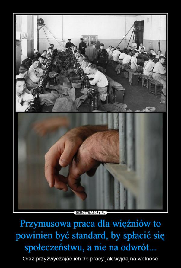 Przymusowa praca dla więźniów to powinien być standard, by spłacić się społeczeństwu, a nie na odwrót... – Oraz przyzwyczajać ich do pracy jak wyjdą na wolność