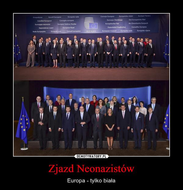 Zjazd Neonazistów – Europa - tylko biała
