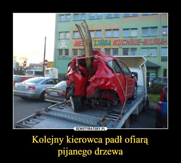 Kolejny kierowca padł ofiarąpijanego drzewa –