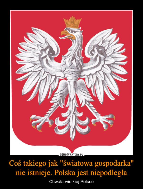 """Coś takiego jak """"światowa gospodarka"""" nie istnieje. Polska jest niepodległa – Chwała wielkiej Polsce"""