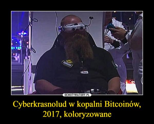 Cyberkrasnolud w kopalni Bitcoinów,2017, koloryzowane –