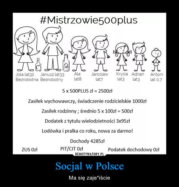 Socjal w Polsce – Ma się zaje*iście