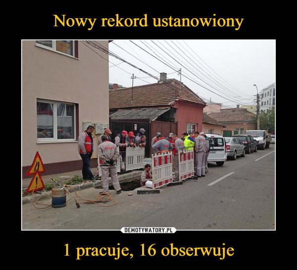 1 pracuje, 16 obserwuje –