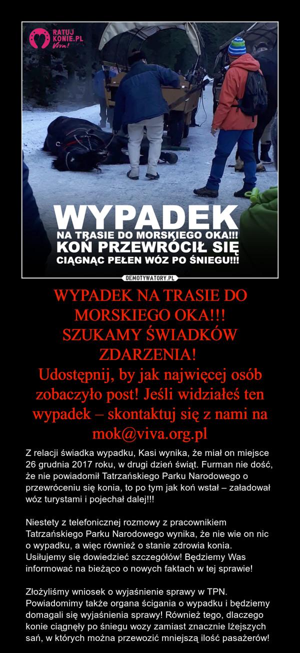 WYPADEK NA TRASIE DO MORSKIEGO OKA!!! SZUKAMY ŚWIADKÓW ZDARZENIA!  Udostępnij, by jak najwięcej osób zobaczyło post! Jeśli widziałeś ten wypadek – skontaktuj się z nami na mok@viva.org.pl