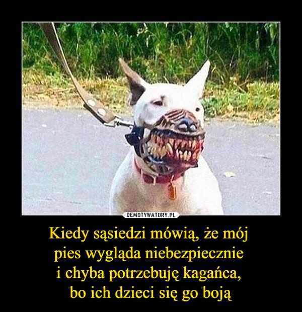 Kiedy sąsiedzi mówią, że mój pies wygląda niebezpiecznie i chyba potrzebuję kagańca, bo ich dzieci się go boją –