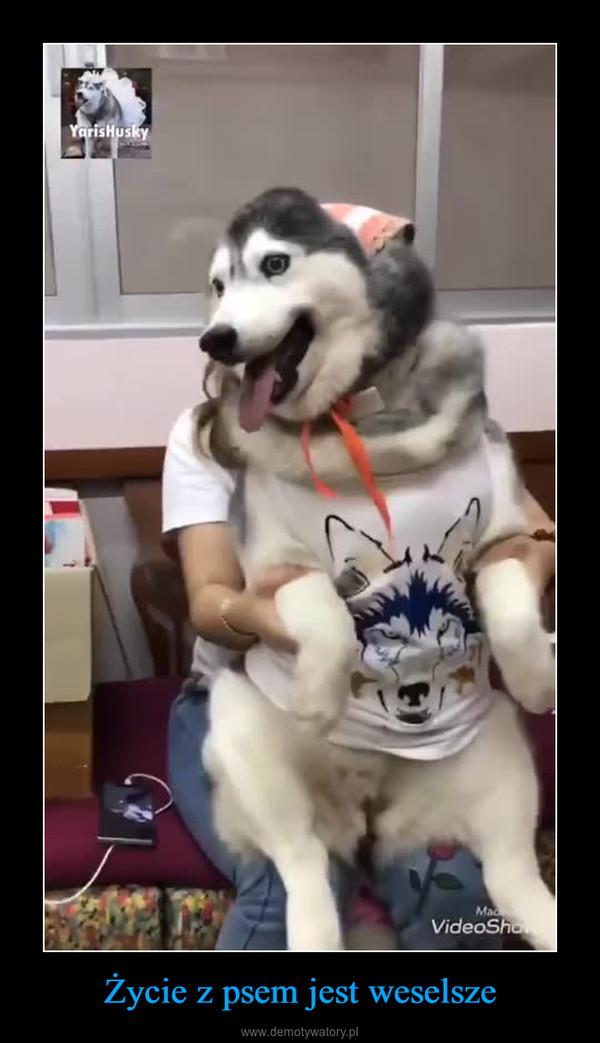 Życie z psem jest weselsze –
