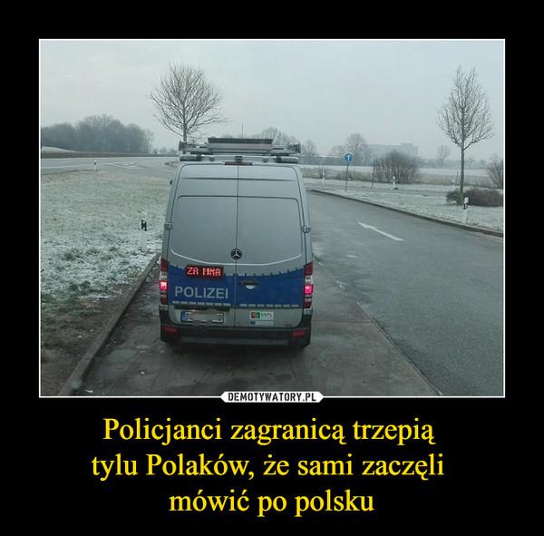 Policjanci zagranicą trzepią tylu Polaków, że sami zaczęli mówić po polsku –