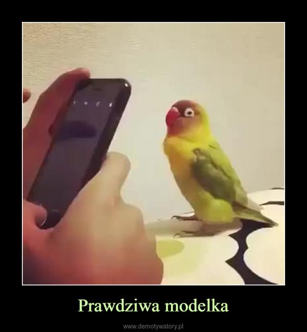 Prawdziwa modelka –