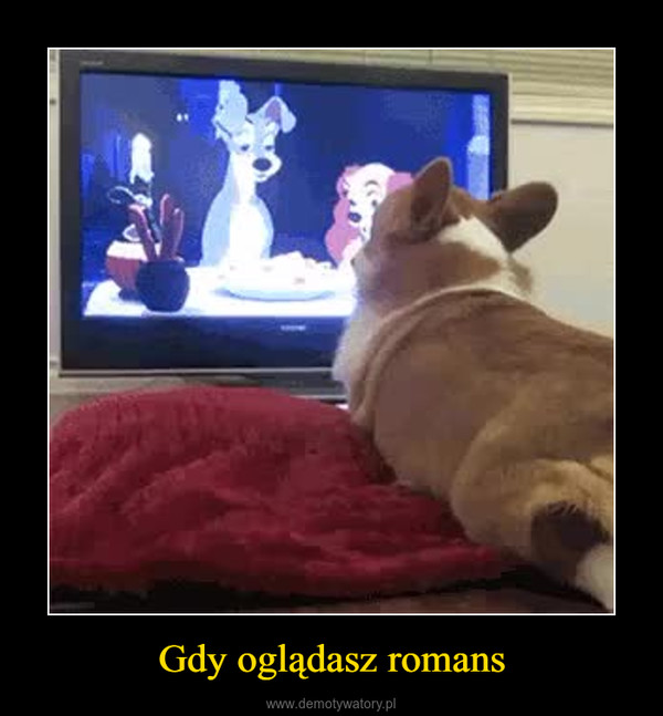 Gdy oglądasz romans –
