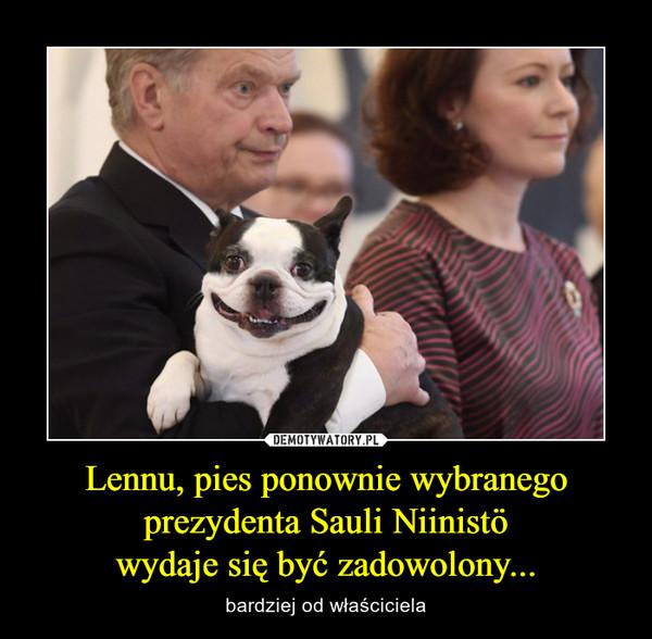 Lennu, pies ponownie wybranego prezydenta Sauli Niinistöwydaje się być zadowolony... – bardziej od właściciela