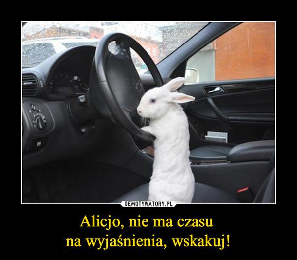 Alicjo, nie ma czasu na wyjaśnienia, wskakuj! –