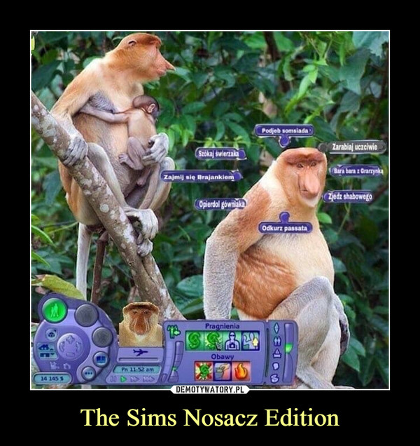 The Sims Nosacz Edition –