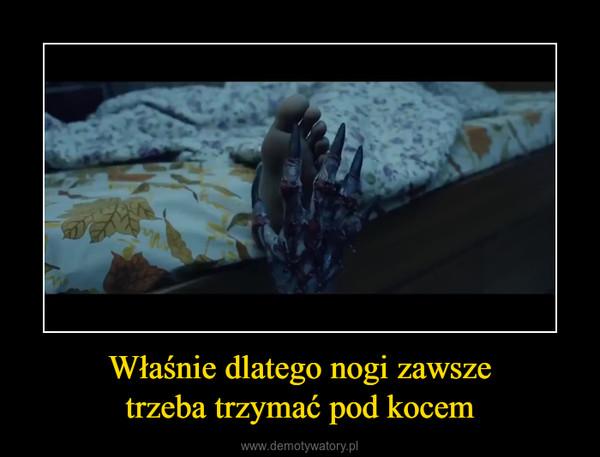 Właśnie dlatego nogi zawszetrzeba trzymać pod kocem –  fb.com/realhairraise
