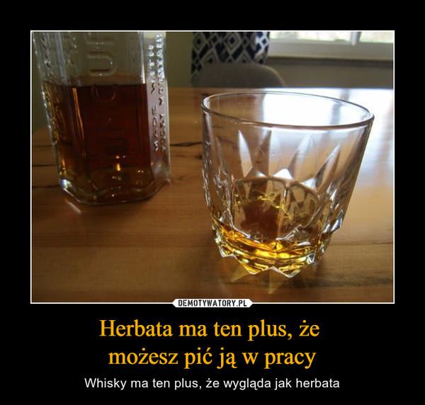 Herbata ma ten plus, że możesz pić ją w pracy – Whisky ma ten plus, że wygląda jak herbata