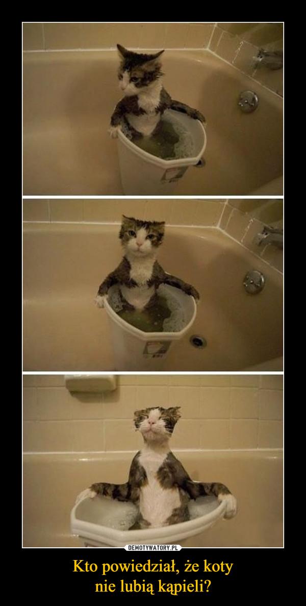 Kto powiedział, że kotynie lubią kąpieli? –