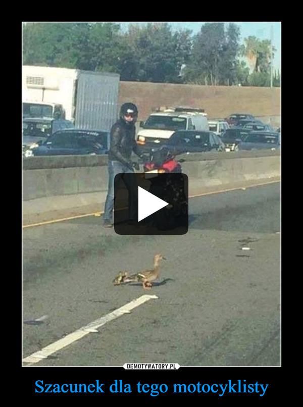 Szacunek dla tego motocyklisty –